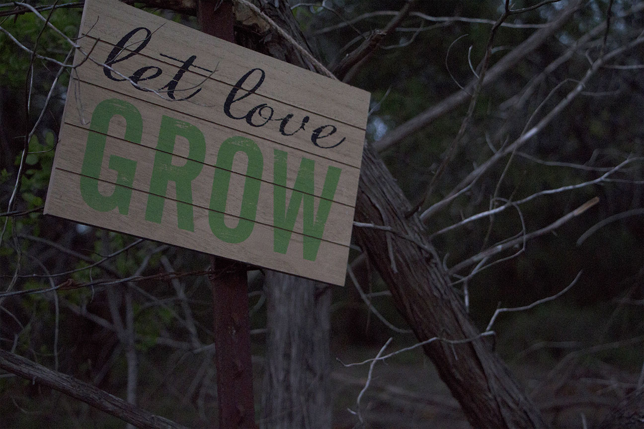 letlovegrow